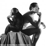 Monkeying around with leadership - Kairos Blog by Tania West